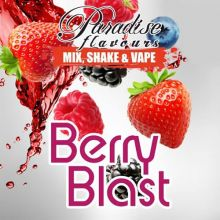 Paradise Flavours Berry Blast - Shake and Vape